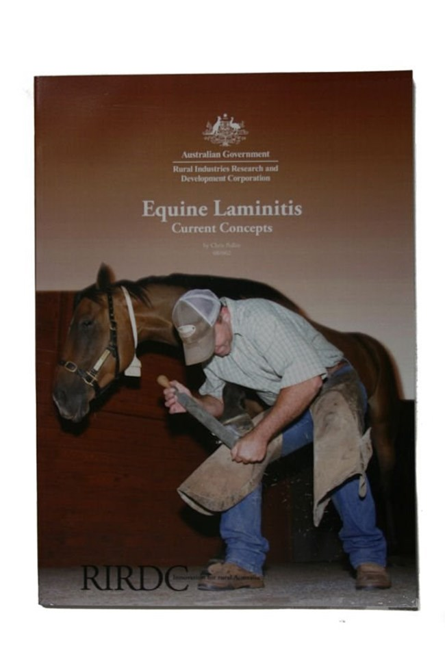 Equine laminitis - Current Concepts
